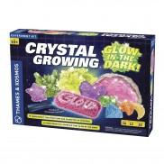 Glow in the Dark Crystal Growing Kit