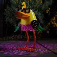 Solar Doctor Duck