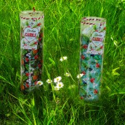 Summer Festival Tall Candles (2 Pack)