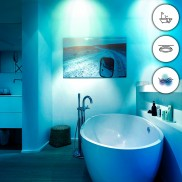 WiZ Smart Stellar Ceiling Light (WZ509089)