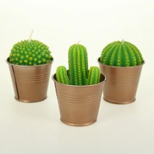 Cactus Candles (Single)