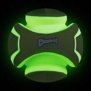 Chuckit Lightplay Fetch Ball