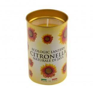 Citronella Fragrant Sunflower Lantern