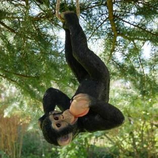 Rope Hanging Chimp Garden Ornament