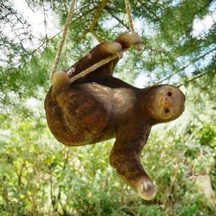Climbing Sloth Decoration