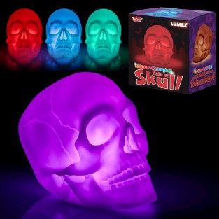 Colour Change Skull Light