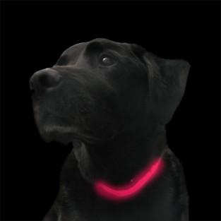 Pink Light Up Dog Collar