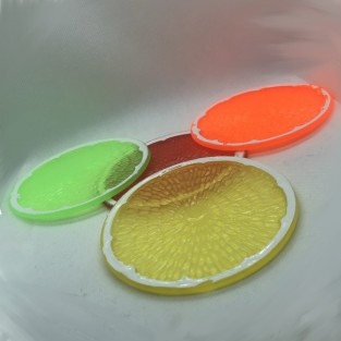 Fruit Slice Coasters (4 pack)