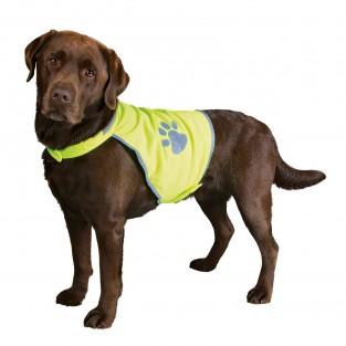 Hi-Vis Dog Vest