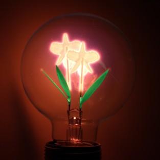 Iris Lightbulb