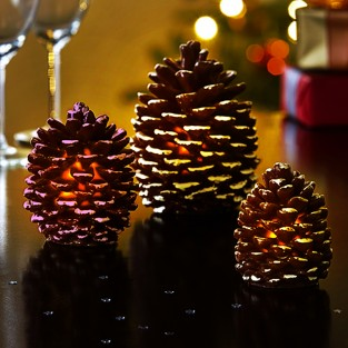 LED Pine Cone Lights (3 Pack)