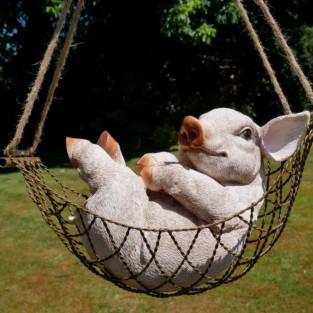 Pig in a Hammock