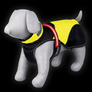 Safety Flash Dog Coat
