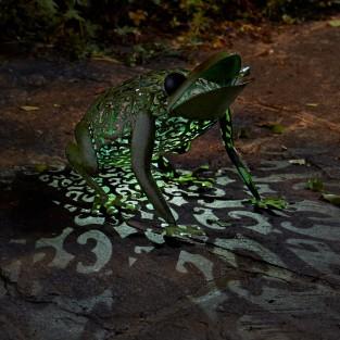 Solar Silhouette Frog