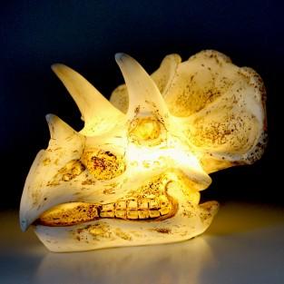 Triceratops Skull Lamp
