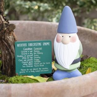 Weather Forecasting Gnome