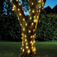 100 Solar Firefly String Lights 4 Warm White