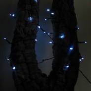 100 White LED Solar Fairy Lights 3