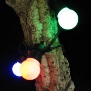 Multi Coloured Connectable Festoon Lights 3