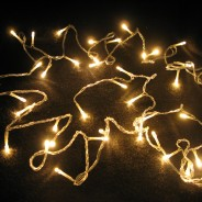 40 LED Warm White Fairy Lights (17495) 1