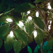Solar Extra Large Bulb String Lights 2