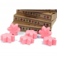 Soy Wax Flower Melts (6 pack) 5 Japanese Magnolia