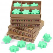 Soy Wax Flower Melts (6 pack) 4 Hidden Garden