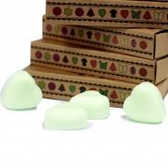 Soy Wax Heart Melts (6 pack) 8 Watermelon Fresh