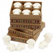 Soy Wax Shroom Melts (6 pack) 10 White Musk