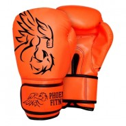 Boxing Gloves - Punching Mitts 3