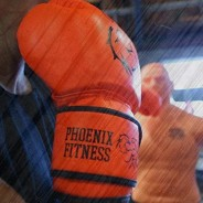 Boxing Gloves - Punching Mitts 1