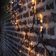 Black Climbing Ivy Twig Lights - Solar, Battery or Mains 2