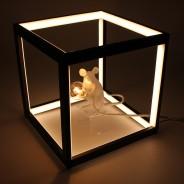 LED Black Box Lamp 5