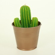 Cactus Candles (Single) 2
