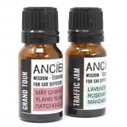 Car Diffuser Kit Essential Oils 4