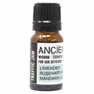Car Diffuser Kit Essential Oils 2 Traffic Jam