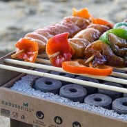 Biodegradable Bamboo Instant BBQ 4