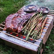 Biodegradable Bamboo Instant BBQ 7