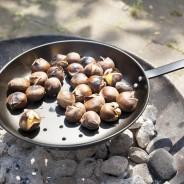 Chestnut Roasting Pan 1