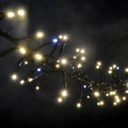 Cluster LED Timer Fairy Lights with Twinkle Effect  10 Warm White