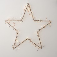 Coco Cluster Battery Operated Fairy Lights 5