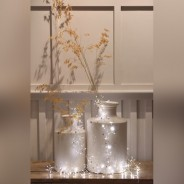 Coco Cluster Battery Operated Fairy Lights 3