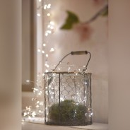 Coco Cluster Battery Operated Fairy Lights 2