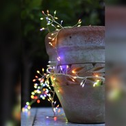Multi Function Warm White & Colour Changing Cluster Lights 1