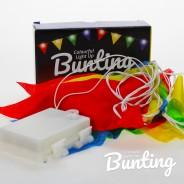 Light Up Bunting - 8 Illuminated Flags 2