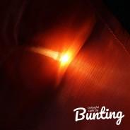 Light Up Bunting - 8 Illuminated Flags 5