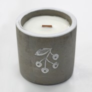 Concrete Soy and Woodwick Candles  6 Juniper & Sweet Gin