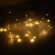Copper Tone Wire Lights 5