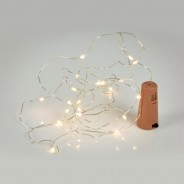 LED Bottle Fairy Lights - 20 Warm White  3