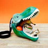Dinosaur Lunch Box and Storage Case 4